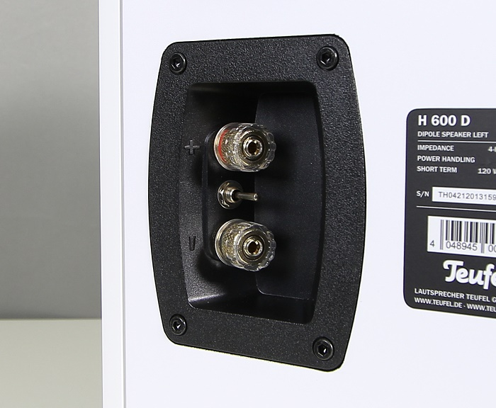 Teufel Theater 6 Hybrid H600D Anschluesse