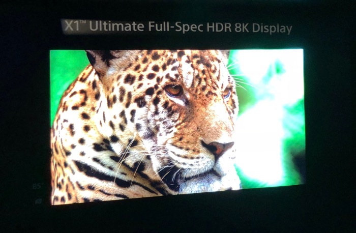 Sony Ultimate 8K Display