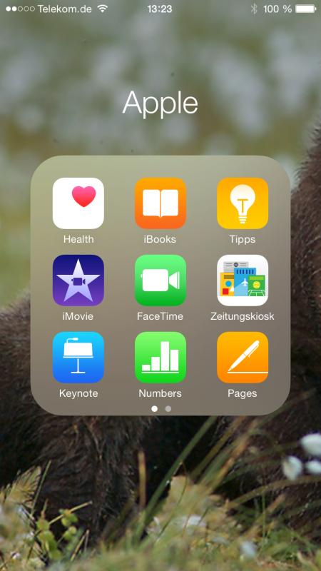 Apple_iPhone6_screenshot_ordner_apple