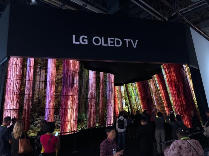 LG OLED Canyon 1